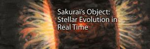 Sakurai's Object: Stellar Evolution in Real Time